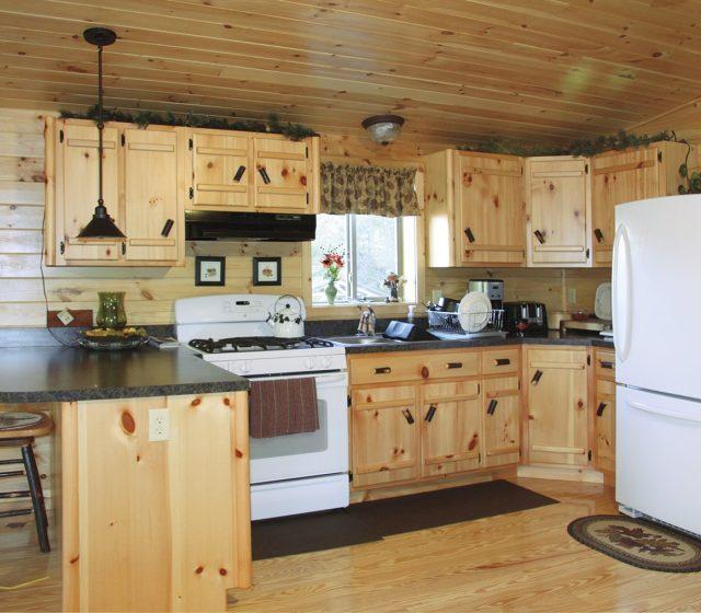 Log Home Settler Model