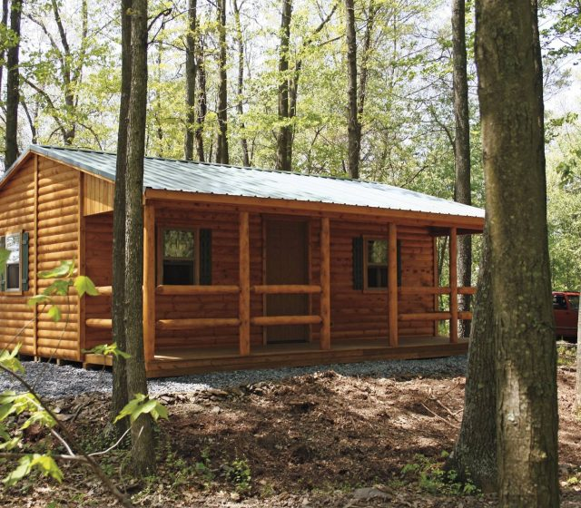 Lincoln log cabin in woods