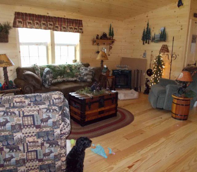 Settler Tiny Cabin