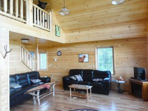 ski lodge cabin with open living room