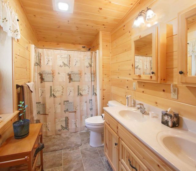 master cabin bathroom with double vanity