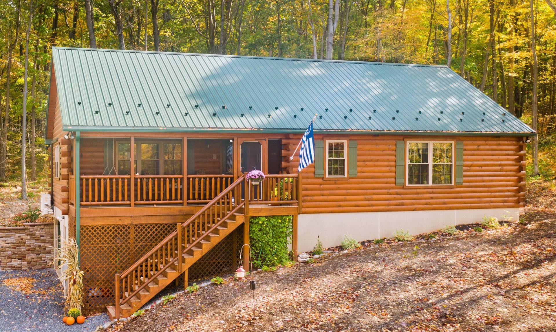 metal roof on frontier log cabin