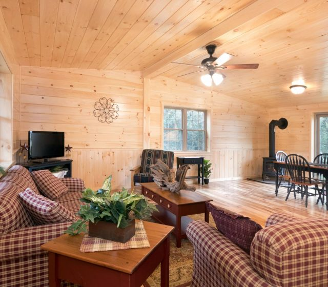 pine siding and flooring in frontier cabin